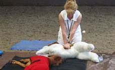 woman-giving-cpr-in-an-outdoor-class